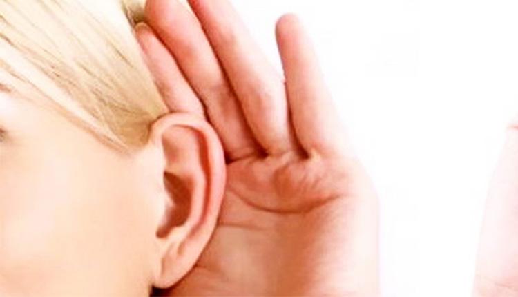 come funziona l orecchio