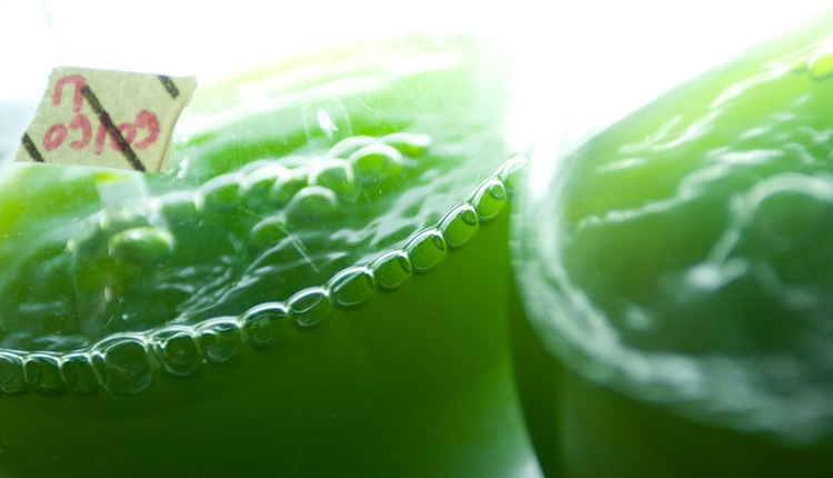 conoscere alga spirulina